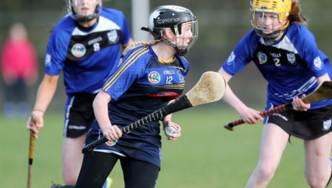 Senior Camogs Book Ulster Final Place
