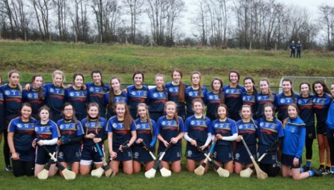 Commiserations to our Senior Camogs!